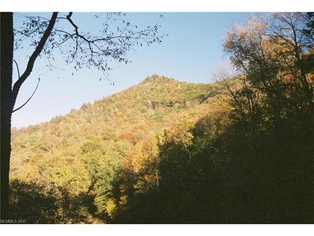 Lot 205 Chickadee Lane, Maggie Valley NC 28751 - Photo 1