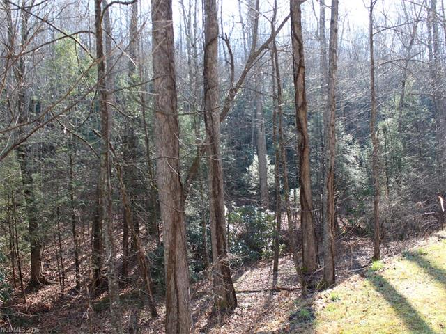 Lot 79 Catawba Falls Trail, Old Fort NC 28762 - Photo 1