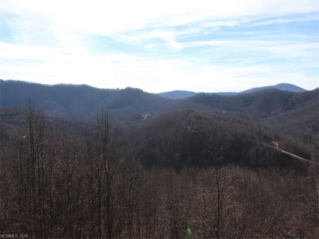 Lot 79 Catawba Falls Trail, Old Fort NC 28762 - Photo 2