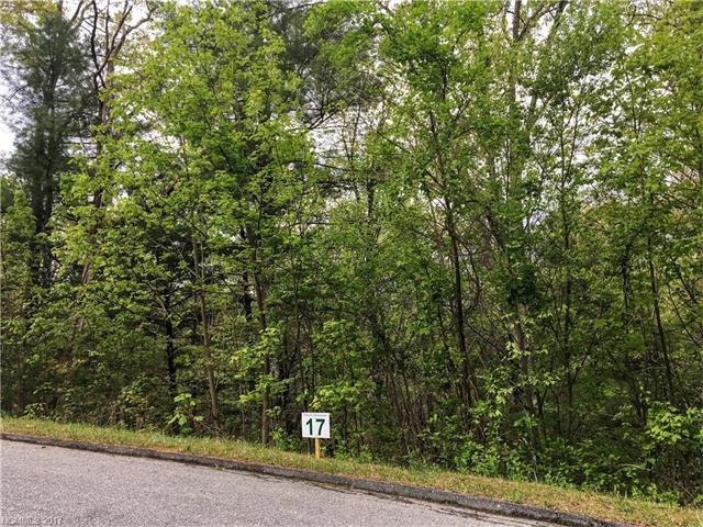 94 Wendy Dawn Drive # 17, Fletcher NC 28732 - Photo 1