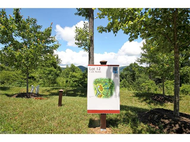 33 Grovepoint Way # Lot 12, Asheville NC 28804