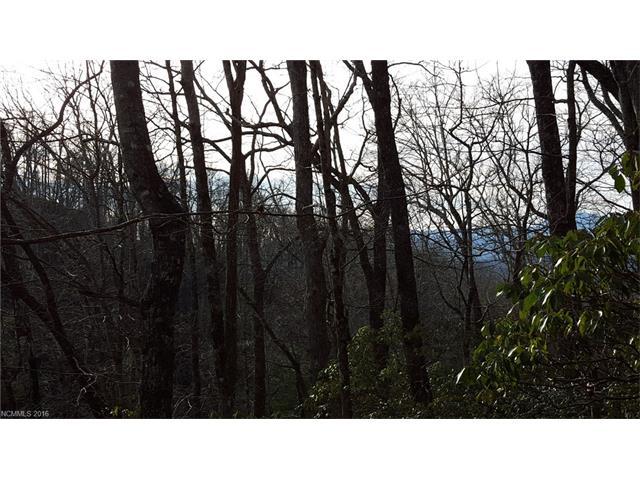 Tbd Connestee Trail, Brevard NC 28712