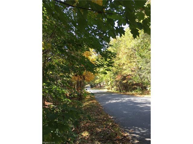 99999 Robinhood Road, Asheville NC 28804