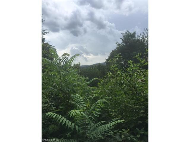 Lot 97 Catawba Falls Preserve Road, Black Mountain NC 28711 - Photo 2