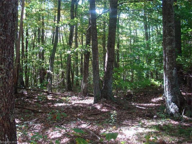 14/15 Deer Run Road, Mars Hill NC 28754