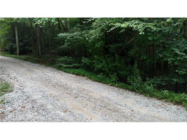 0 Griffin Drive, Edneyville NC 28727 - Photo 2