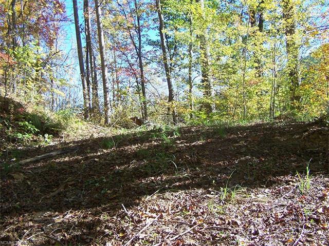 Lot 71 Running Deer Lane, Mars Hill NC 28754