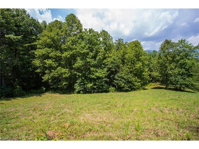 0 S Lindon Cove Road # 12, Candler NC 28715 - Photo 2