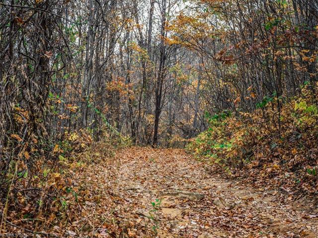9999 Ox Creek Road, Weaverville NC 28787 - Photo 1