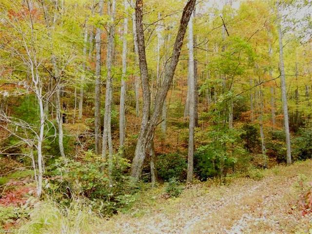 8 & 9 Rock Cave Road, Black Mountain NC 28711