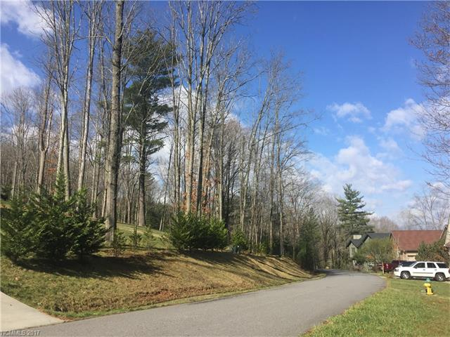 31 Forest Spring Drive # 14a, Woodfin NC 28804