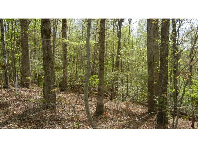Lot 24 Mccracken Cove, Hayesville NC 28904 - Photo 2