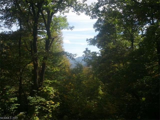 Lot C-6 57 Trillium Lane # C-6, Black Mountain NC 28711