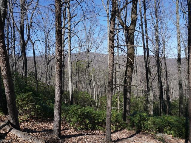 Lot 302 Quail Ridge Road, Lake Lure NC 28746