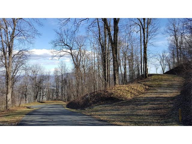 Lot T-26 2687 Creston Drive # T-26, Black Mountain NC 28711 - Photo 2