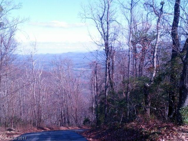 Lot T-42, 144 Galax Drive # Lot T-42, Black Mountain NC 28711 - Photo 2