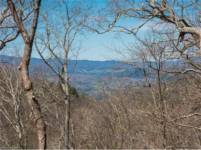 642 Altamont View # 55, Asheville NC 28804