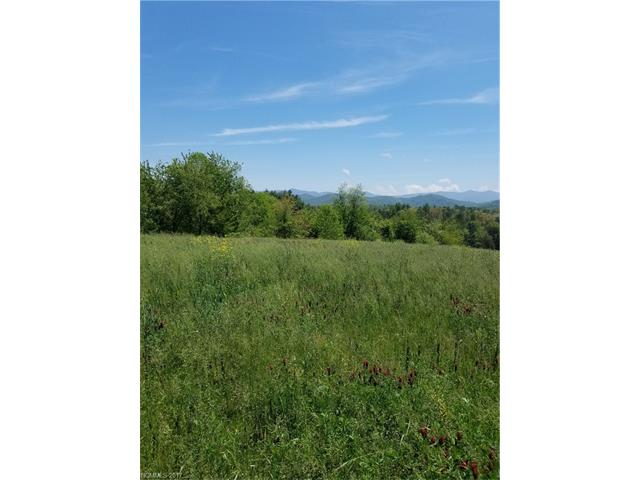 Tbd Parkway View Road, Mars Hill NC 28754 - Photo 1