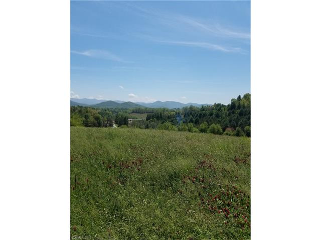 Tbd Parkway View Road, Mars Hill NC 28754 - Photo 2