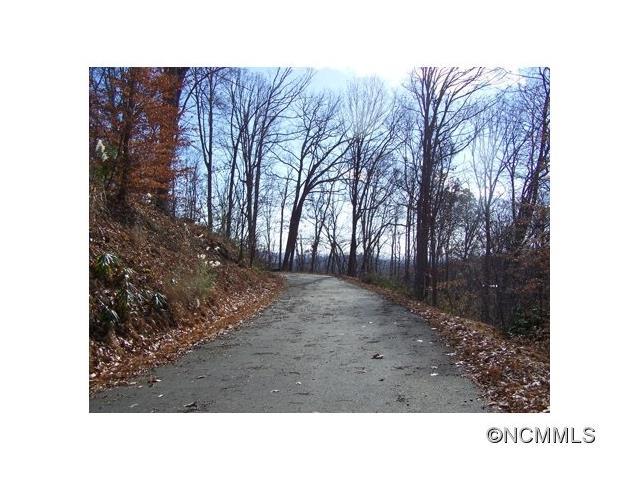 Lot 63 Turkey Run Drive, Mars Hill NC 28754 - Photo 2