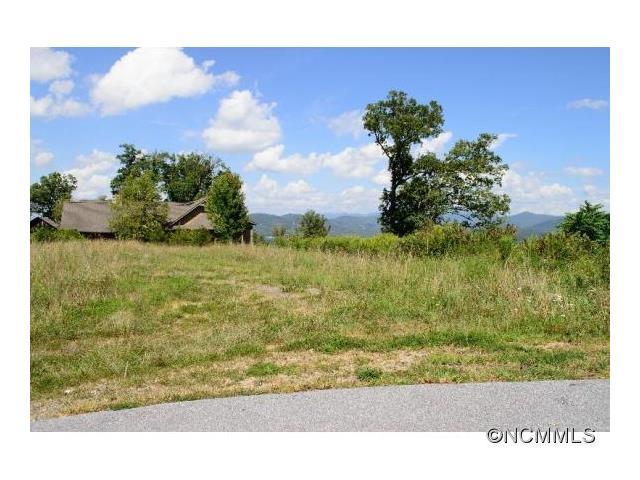 5 Redtail Ridge Road # 54, Asheville NC 28806 - Photo 1