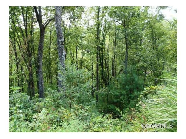 0 Spy Pointe Ln Lot 14, Fairview NC 28732