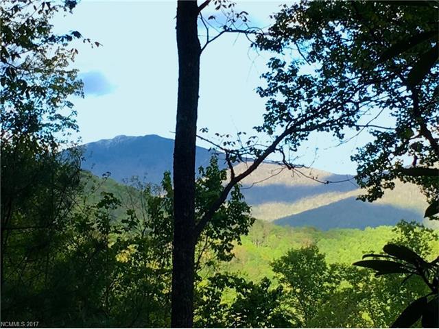 396 Chestnut Branch Road, Bakersville NC 28705 - Photo 2