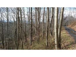 99999 Scenic View Drive # 21 Hendersonville