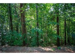Lot 13 Skyview Circle Asheville