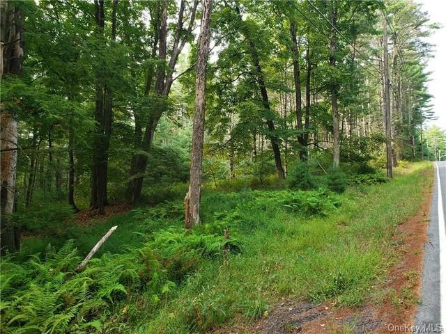 Griffin Road, Forestburgh NY 12777