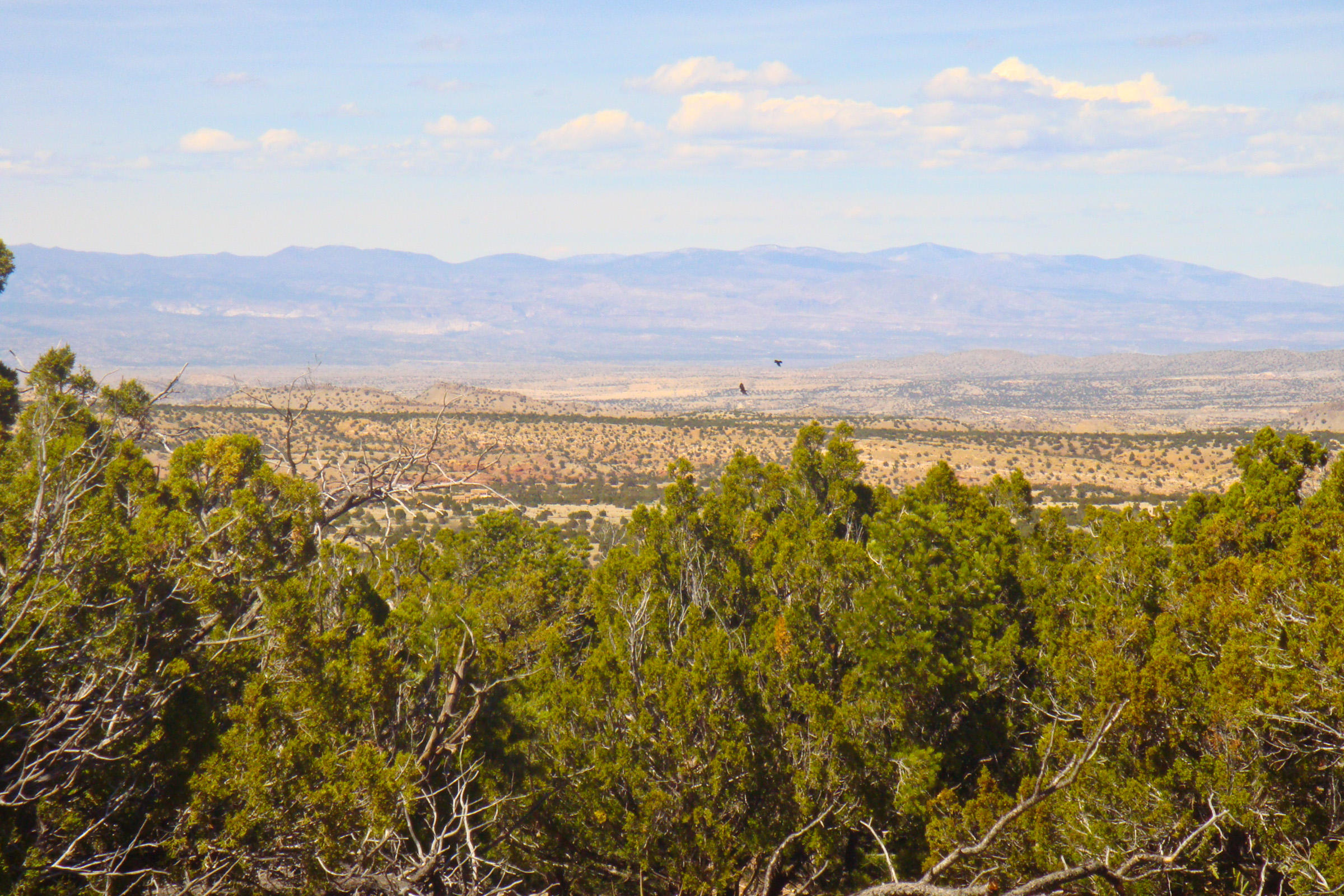 20 La Cantera, Sandia Park NM 87047 - Photo 1