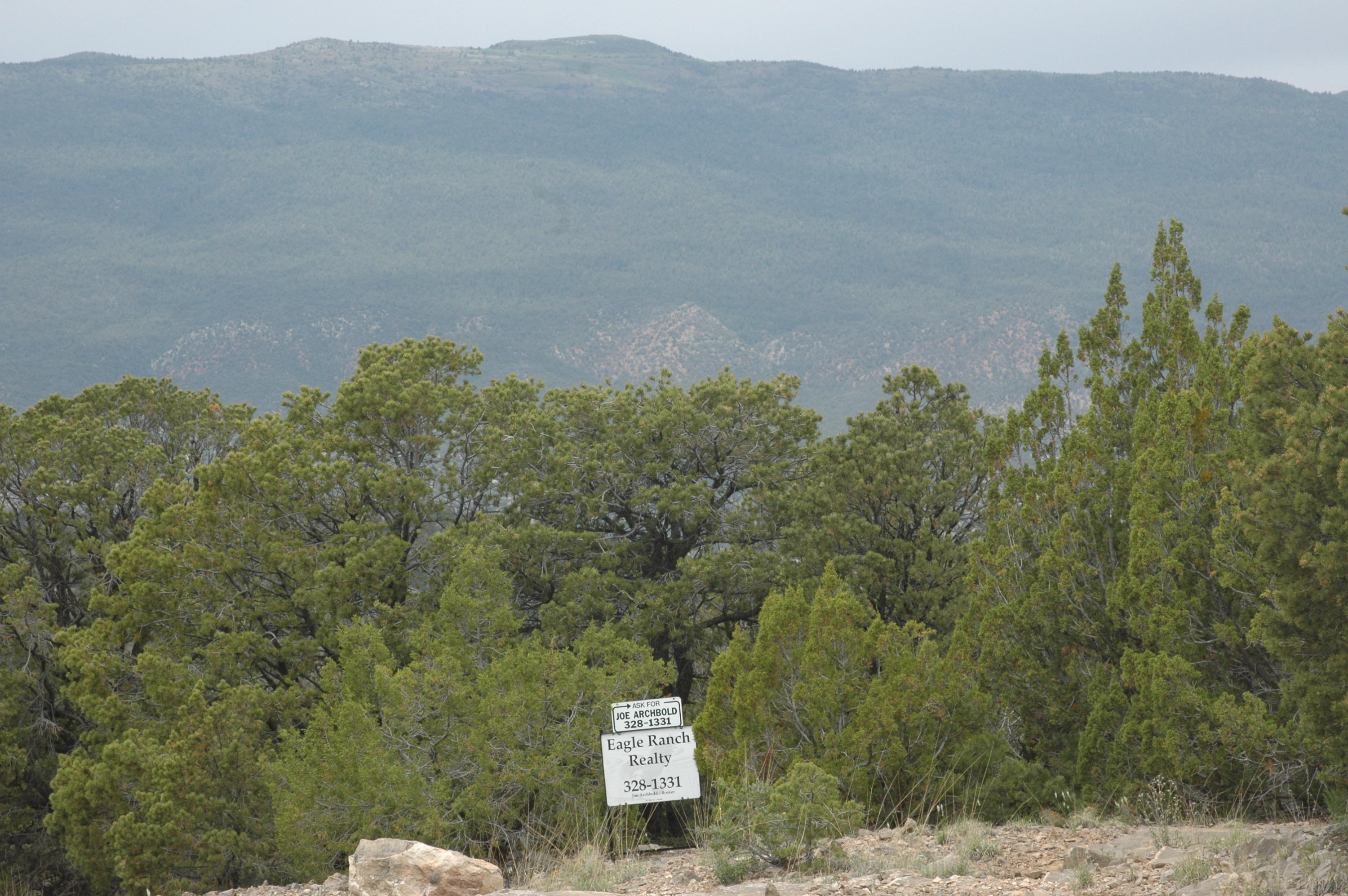 17 Enchantment View (l9,b6,fh), Tijeras NM 87059 - Photo 1