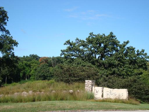1551 W Longwood Drive, Woodstock IL 60098 - Photo 1