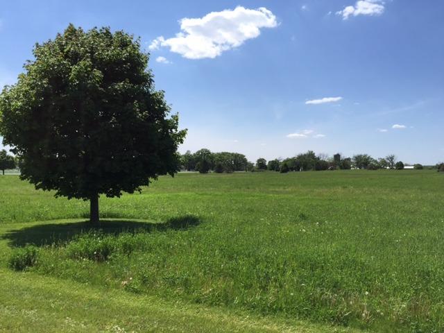 8709 Prairiefield Drive, Union IL 60180 - Photo 1