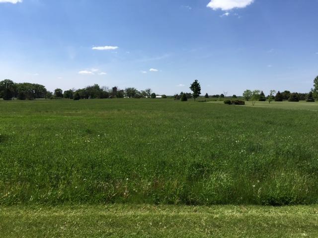8709 Prairiefield Drive, Union IL 60180 - Photo 2