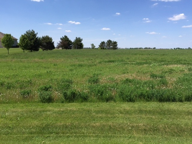 17402 Wildflower Circle, Union IL 60180 - Photo 1