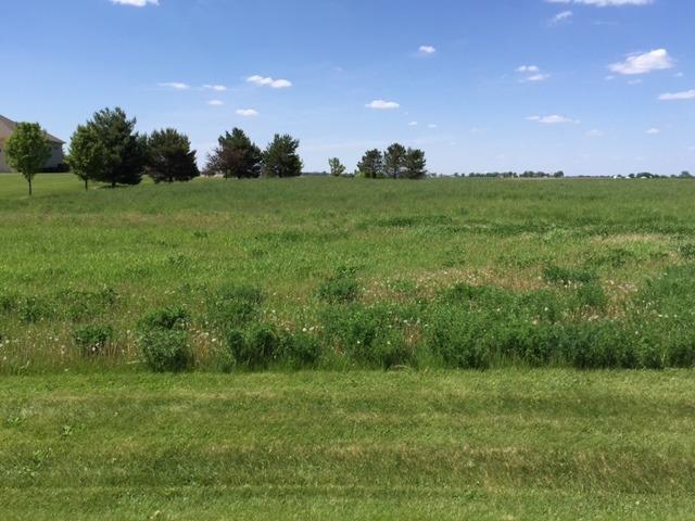 17402 Wildflower Circle, Union IL 60180 - Photo 1
