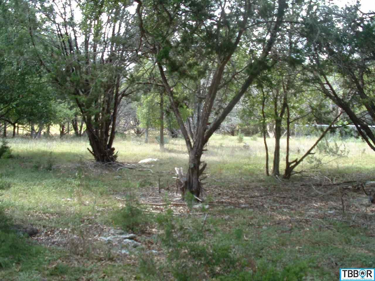 0000 Artesian, Morgans Point TX 76513 - Photo 1