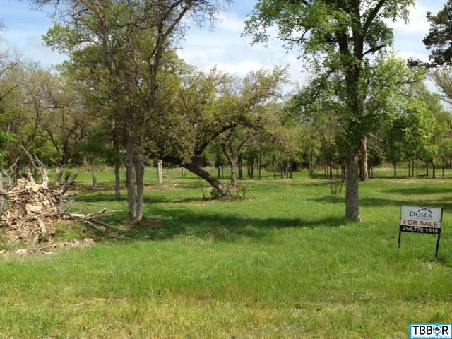 478 Eagle Landing, Temple TX 76513 - Photo 2