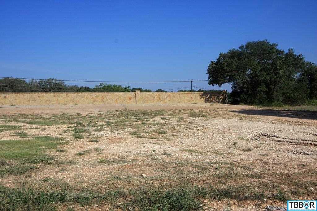 3070 Pecan Meadow Dr., Belton TX 76513 - Photo 1