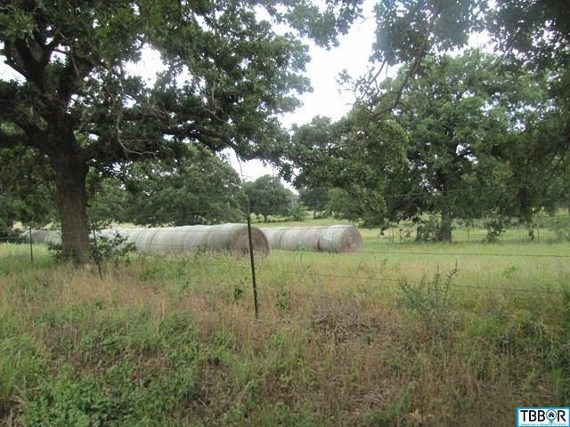 0000 County Rd 402, Holland TX 76534 - Photo 1