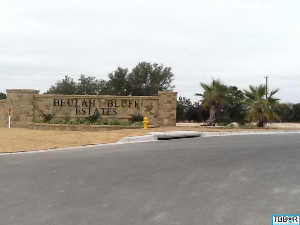 8123 Jericho Bluff, Belton TX 76513 - Photo 1
