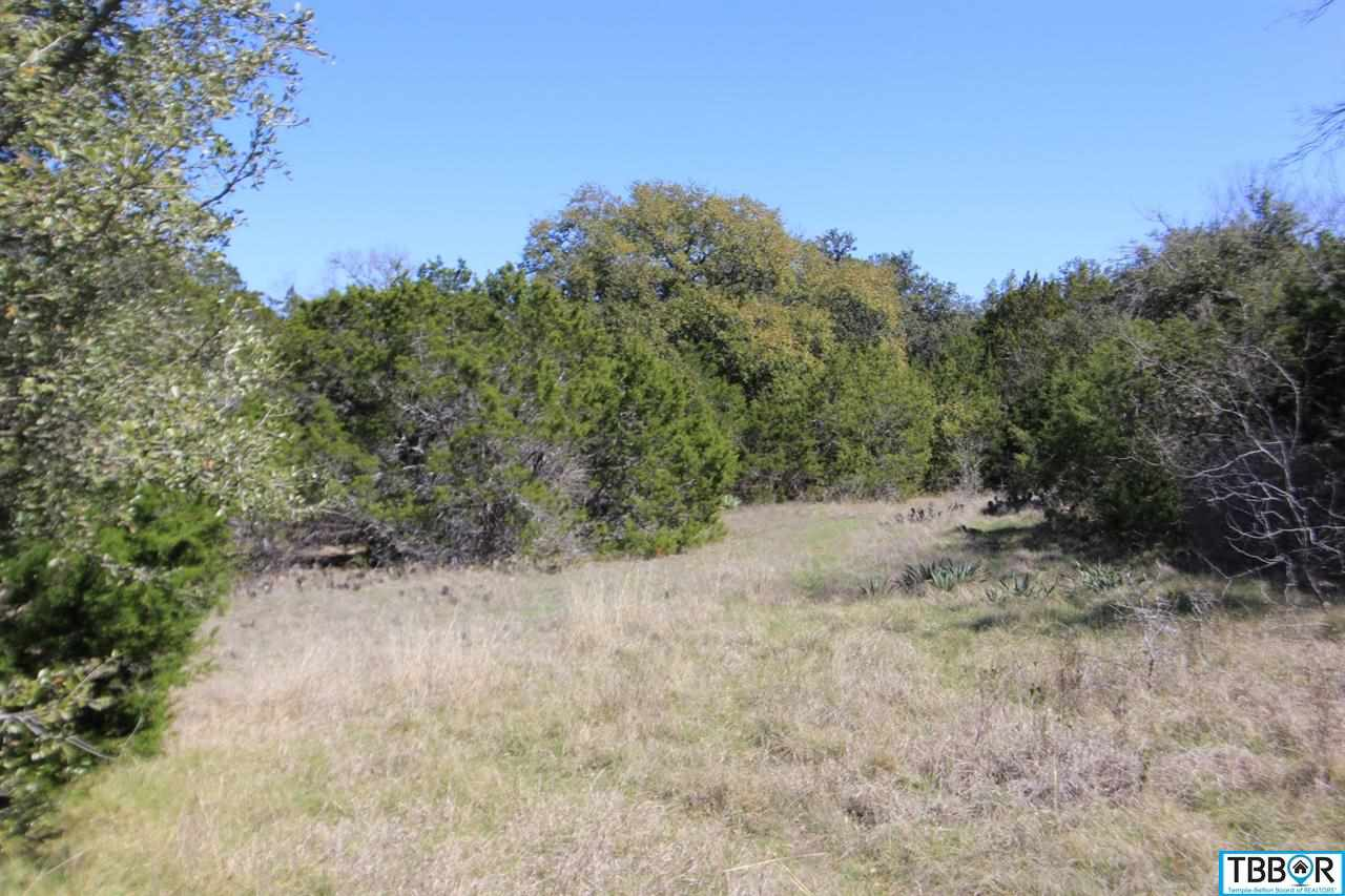 Lot 5 Mackie Drive, Salado TX 76571 - Photo 1