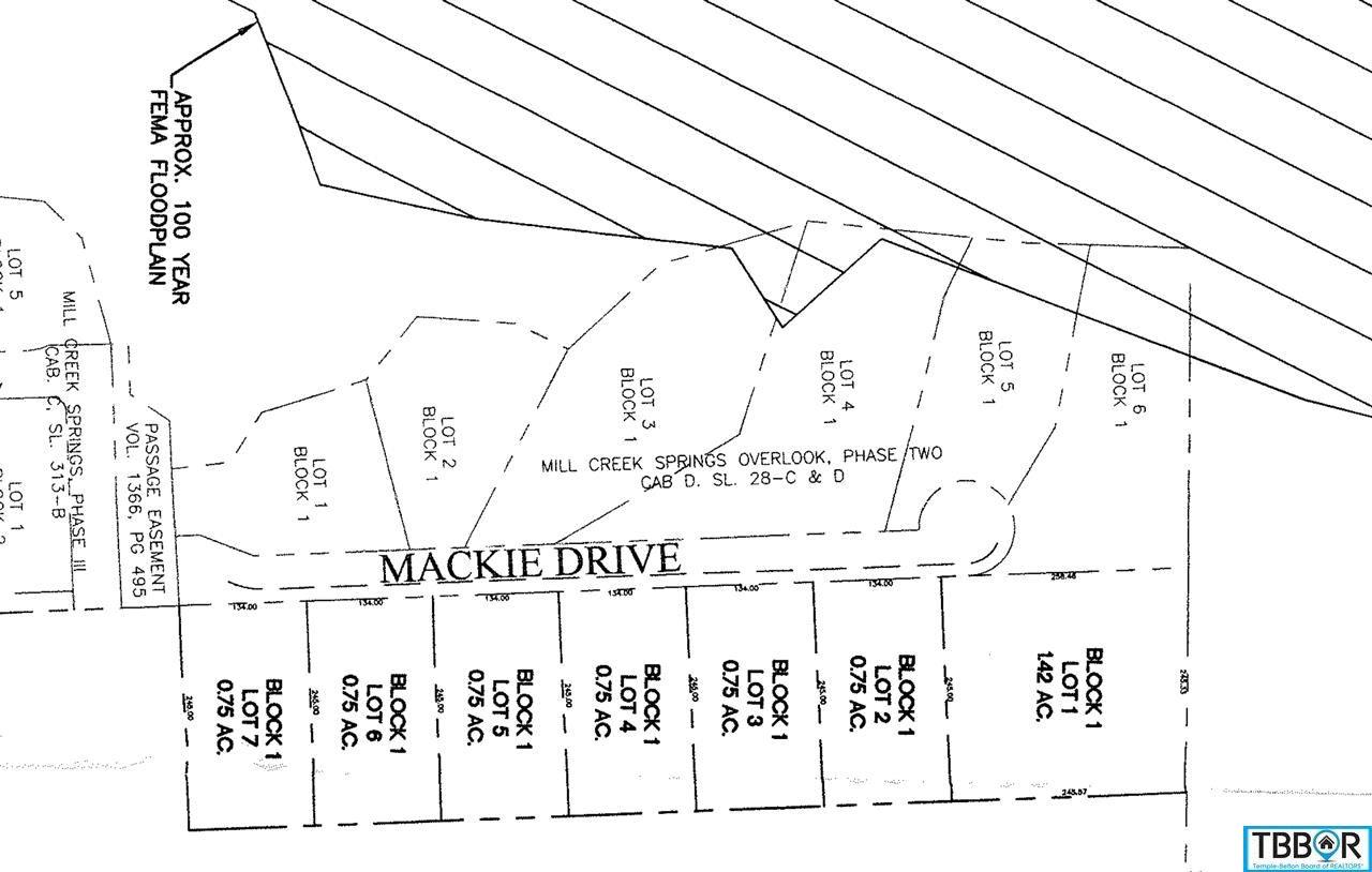 Lot 6 Mackie Drive, Salado TX 76571 - Photo 2