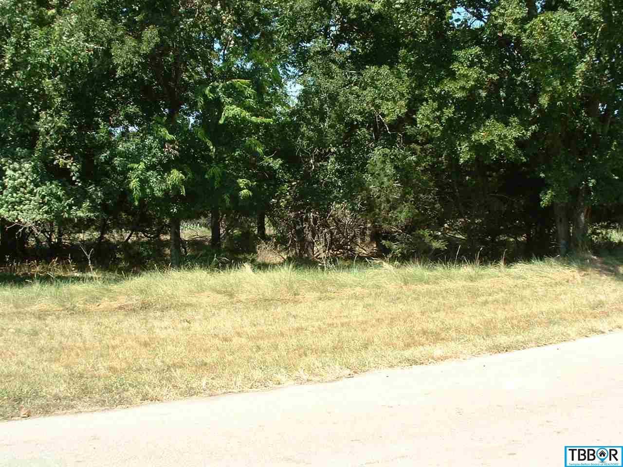 58 Buckskin, Morgans Point TX 76513 - Photo 1