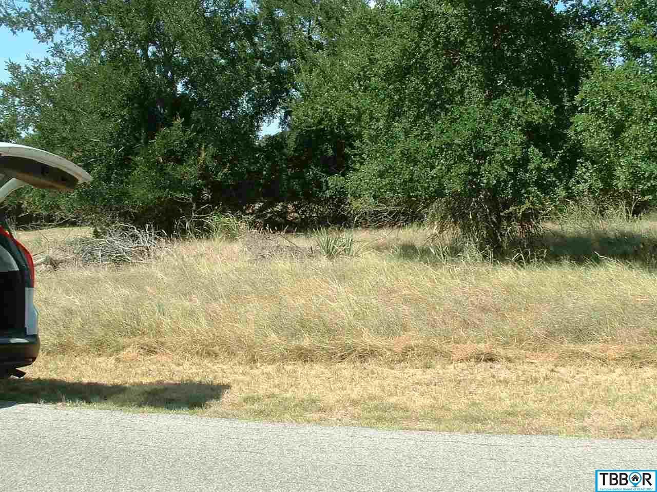 50 Buckskin, Morgans Point TX 76513 - Photo 1