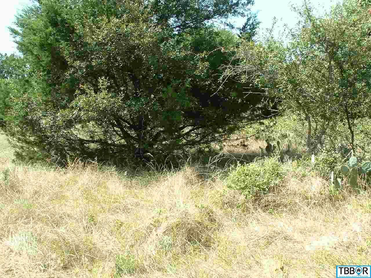 13 Buckskin, Morgans Point TX 76513 - Photo 1