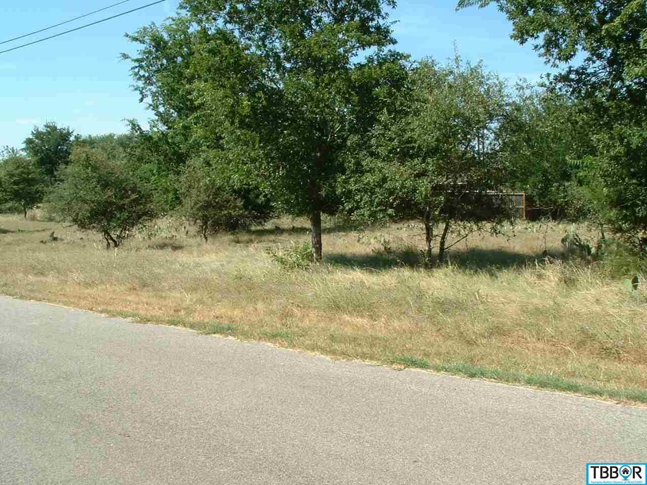 23 Blue Roan, Morgans Point TX 76513 - Photo 1