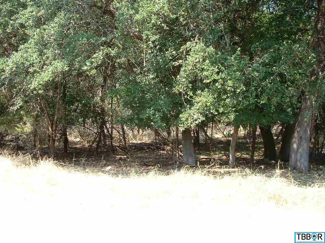 5 N Robin, Morgans Point TX 76513 - Photo 1
