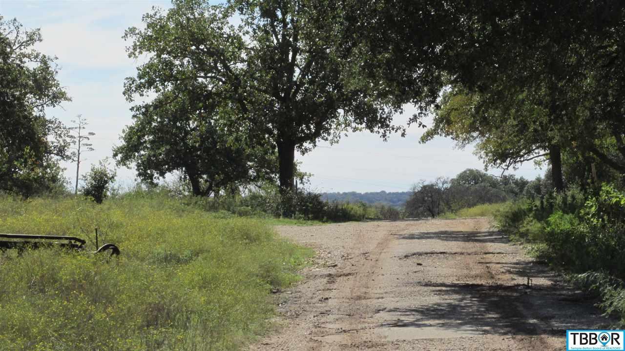 72.58 Acres Fm 439, Belton TX 76513 - Photo 1